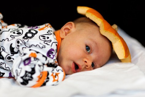 http://www.publicdomainpictures.net/view-image.php?image=17704&picture=pumpkin-baby